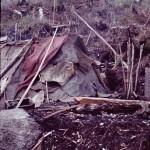 La hutte de Rosa Ovando (1971)