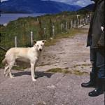 Oso (le chien) et Rodrigo Medina