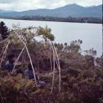 Simulation de la fabrication d'une hutte : Alberto Achacaz et Panchote
